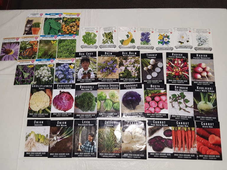 seeds MB .jpg